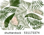 leaf of palm tree background | Shutterstock . vector #531173374