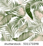 green leaves of palm tree on... | Shutterstock . vector #531173398