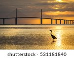 great blue heron silhouetted at ... | Shutterstock . vector #531181840