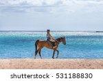 Woman Riding A Horse On Idylli...