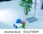 laboratory glassware  bottle ... | Shutterstock . vector #531275839