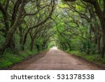 botany bay dirt road in south...   Shutterstock . vector #531378538