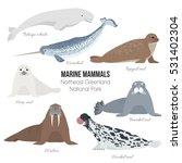 Marine Mammals Set Of Greenlan...