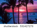 colorful hawaii | Shutterstock . vector #531427273