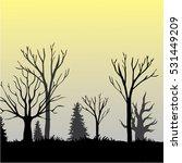 beautiful dark forest...   Shutterstock .eps vector #531449209