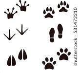 animal footprints   Shutterstock .eps vector #531472210
