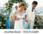 happy newlyweds walk from... | Shutterstock . vector #531511684