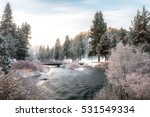 6 degrees  a fresh coating of... | Shutterstock . vector #531549334