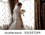 beautiful bride portrait... | Shutterstock . vector #531557299