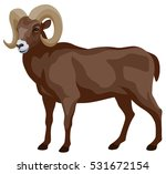 graphic illustration of a... | Shutterstock .eps vector #531672154