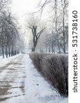 winter in city  winter landscape | Shutterstock . vector #531738160