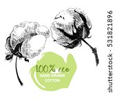 vector hand drawn set of cotton ... | Shutterstock .eps vector #531821896