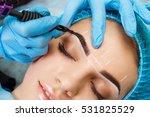 cosmetologist applying... | Shutterstock . vector #531825529