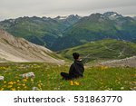 Girl Hiking Alps Mountains Fro...