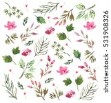 watercolor floral pattern... | Shutterstock . vector #531908326