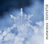 Natural Snowflakes On Snow ...