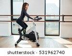 muscular young woman working... | Shutterstock . vector #531962740