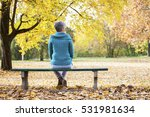 depressed and sad old woman on... | Shutterstock . vector #531981634