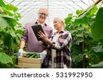 farming  gardening  agriculture ... | Shutterstock . vector #531992950