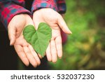 woman hands with green leaf... | Shutterstock . vector #532037230