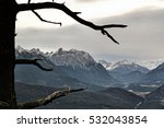 Single Tree With The Mountains...