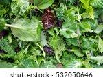 fresh mixed salad field greens... | Shutterstock . vector #532050646