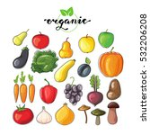 vector set of flat fruits and... | Shutterstock .eps vector #532206208