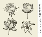 Stock vector flowers hand drawn sketch flowers rose and lily floral pattern vector illustration 532219570