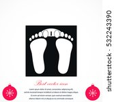 footprints icon vector  flat... | Shutterstock .eps vector #532243390