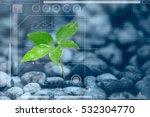 botany information technologies ... | Shutterstock . vector #532304770