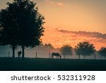 Two Horses In Silhouette In A...