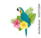 illustration parrot ara ...   Shutterstock . vector #532372264