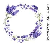 wildflower lavender flower... | Shutterstock . vector #532396600