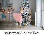 Beautiful Delicate Ballerina I...
