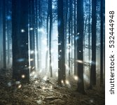 fantasy firefly lights in the... | Shutterstock . vector #532444948