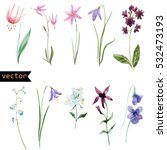 vector watercolour set of... | Shutterstock .eps vector #532473193