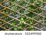 bamboo fence with bougainvillaea | Shutterstock . vector #532499500