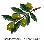 branch with olives  freehand... | Shutterstock . vector #532643530
