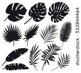 Set Of Palm Leaves Silhouettes...