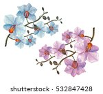 pink and blue orchid flower ... | Shutterstock . vector #532847428