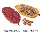 open cocoa pod on a white... | Shutterstock . vector #532875574