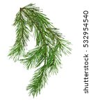pine branch isolate on white... | Shutterstock . vector #532954540