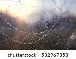 dew on a spider web | Shutterstock . vector #532967353