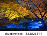 night view of maple  in japan | Shutterstock . vector #533028544