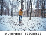 man and his dog walking in the... | Shutterstock . vector #533085688