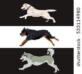 Running Dogs Collection....