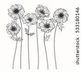 drawing anemone flower on white ... | Shutterstock .eps vector #533180146