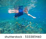 snorkel and coral fishes... | Shutterstock . vector #533385460