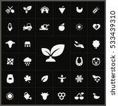 plant icon. agriculture  farm...   Shutterstock . vector #533439310
