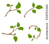 simple branch tree with leaves... | Shutterstock .eps vector #533551360
